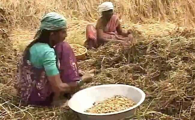 Karnataka_Delayed_Monsoon_Story_650