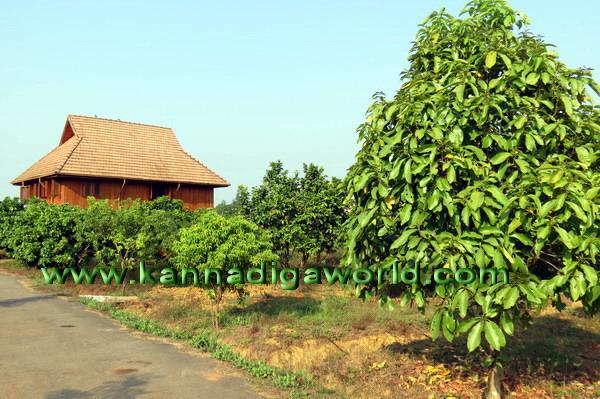 Sukanthai_Cottage_18