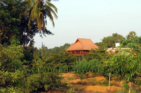 Sukanthai_Cottage_52