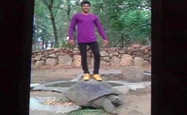 hyderabad-youth-on-tortoise_650x400_41424353607