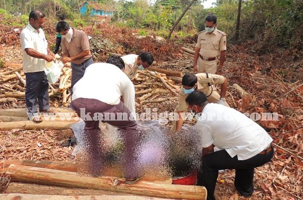 Gangolli- gujjaadi-dead body 026
