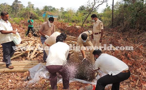Gangolli- gujjaadi-dead body 027