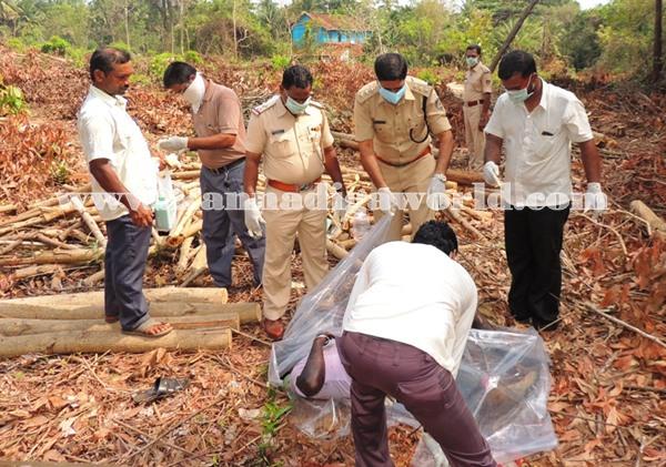 Gangolli- gujjaadi-dead body 029