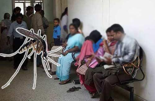 Bangalore-Dengue-Fever