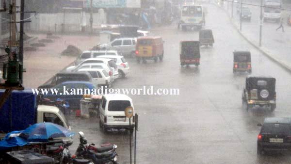 Havey_Rain_Pics_3