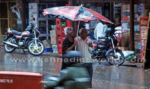 Havey_Rain_Pics_7