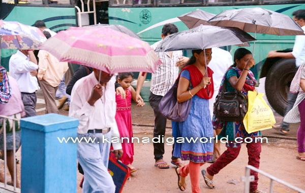 Havey_Rain_Pics_8