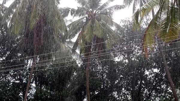 Mangalore_Havey_Rain_5