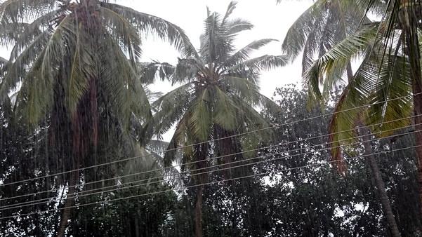 Mangalore_Havey_Rain_6