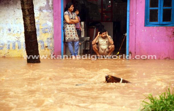 Rain_kottara_Flood_10