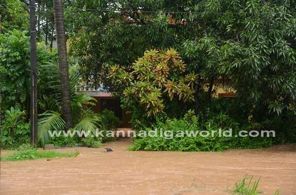 Rain_kottara_Flood_14