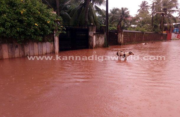 Rain_kottara_Flood_20
