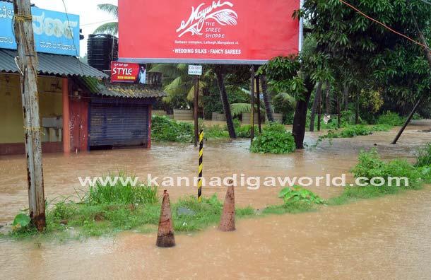 Rain_kottara_Flood_35