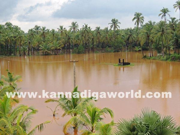 kundapura rain-July 20_2015-003