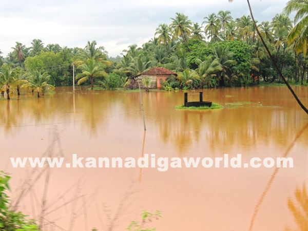 kundapura rain-July 20_2015-004