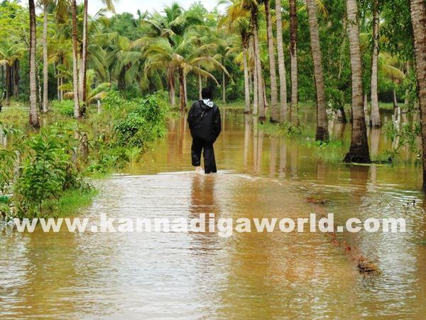 kundapura rain-July 20_2015-005