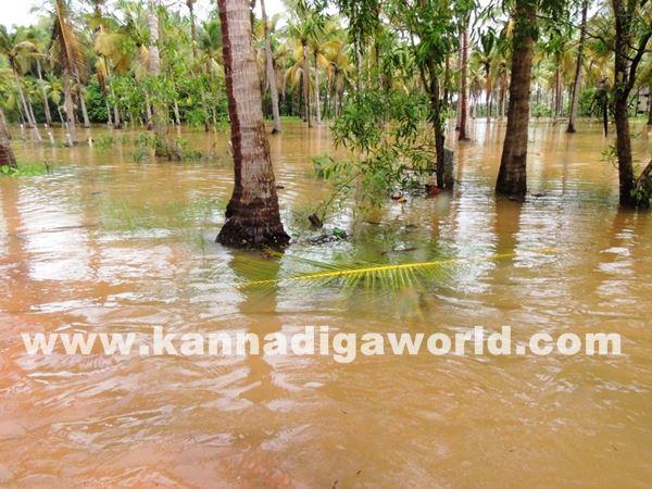 kundapura rain-July 20_2015-006