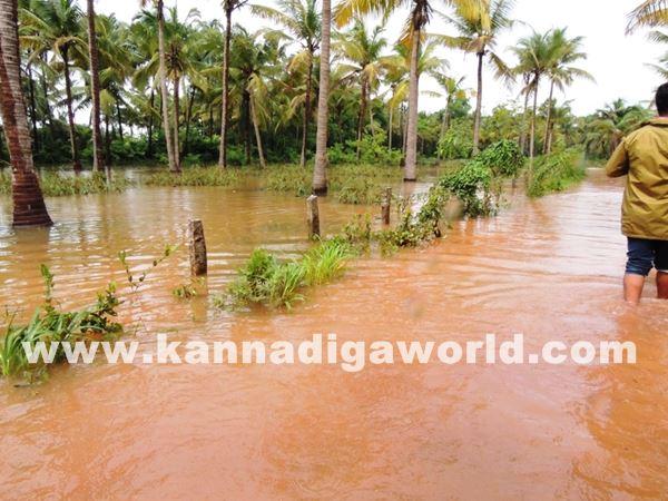 kundapura rain-July 20_2015-007