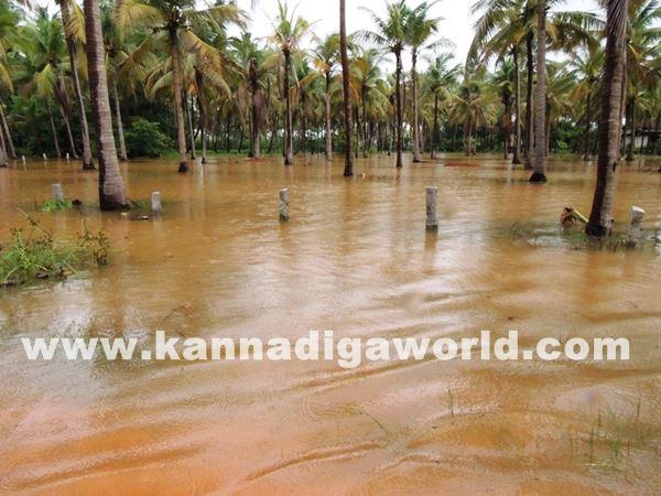 kundapura rain-July 20_2015-008