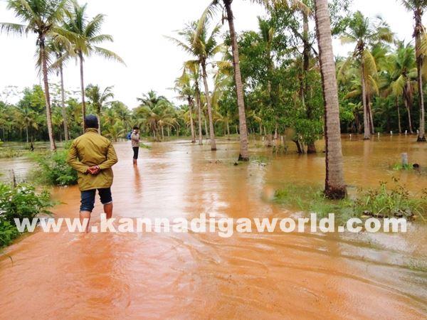 kundapura rain-July 20_2015-009