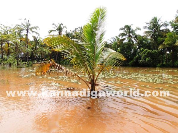 kundapura rain-July 20_2015-010