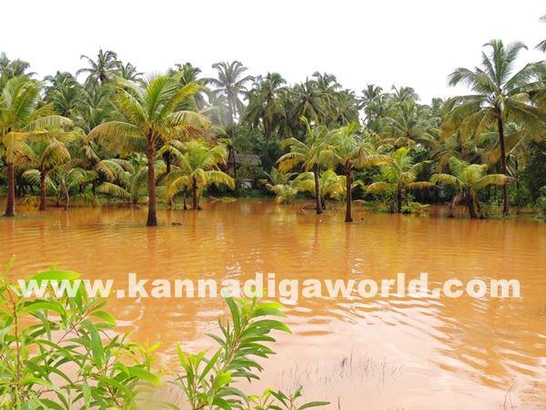 kundapura rain-July 20_2015-012