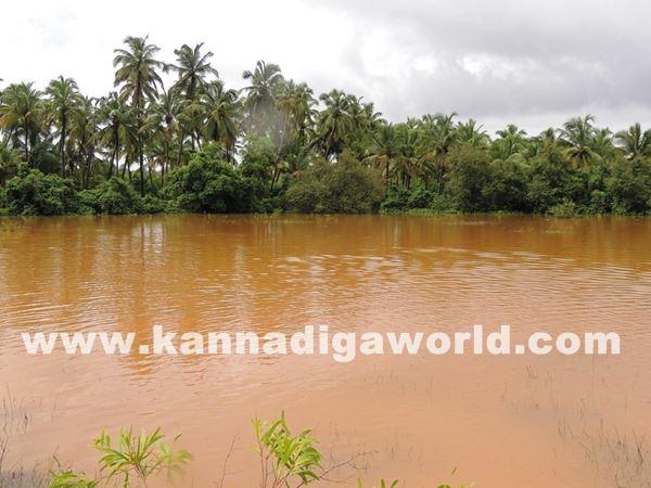 kundapura rain-July 20_2015-013