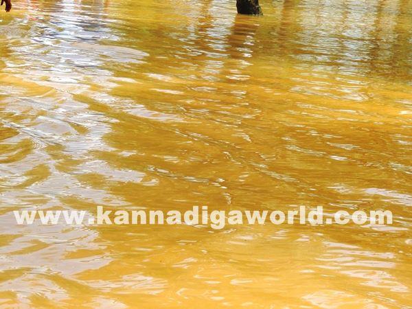 kundapura rain-July 20_2015-035