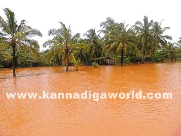kundapura rain-July 20_2015-050