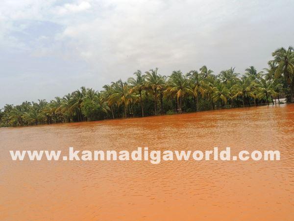 kundapura rain-July 20_2015-052