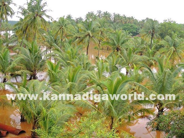 kundapura rain-July 20_2015-060