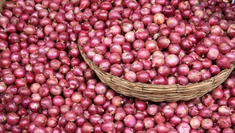 onion-price-rise