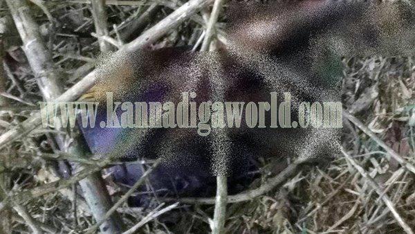 Kndpr_Belve_Lady Murder suspect (2)