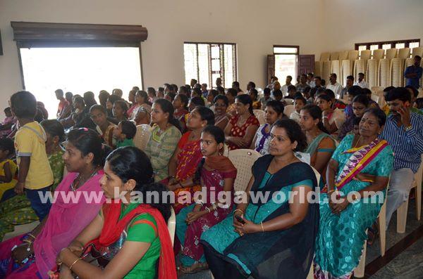 Talents day Celebration at Paladka School _Dec 4-2015-010