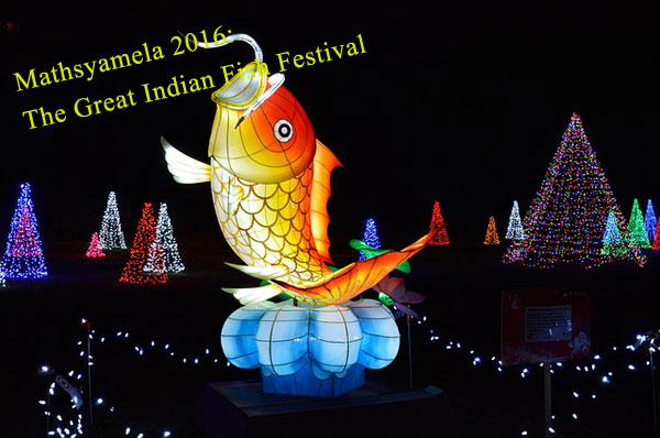 Mathsyamela_fish_Festival
