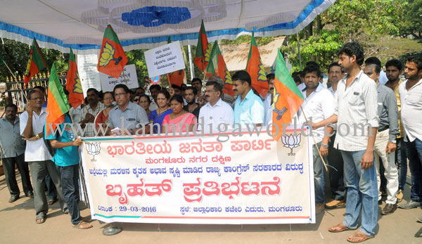 bjp_protest_photo_3