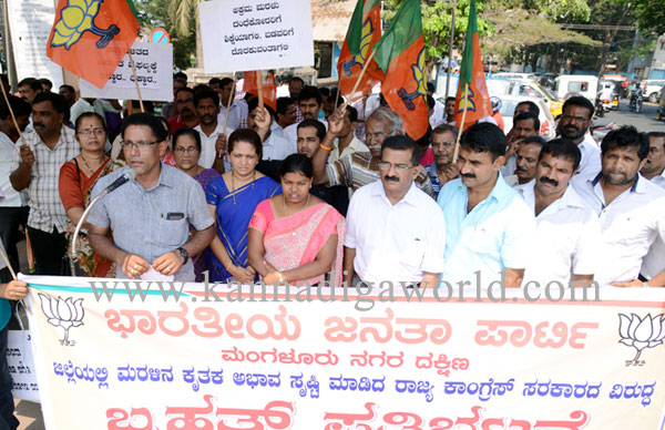 bjp_protest_photo_5