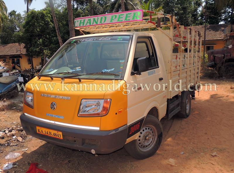 Kota_Illeagle Cow_Transport (3)