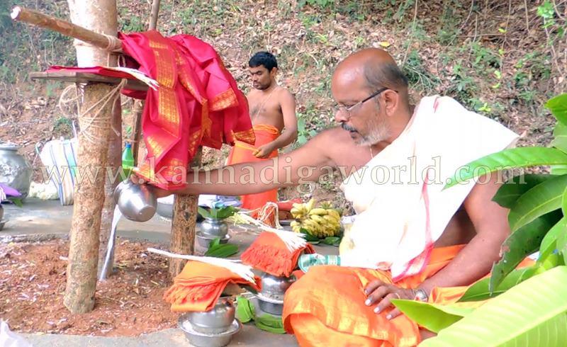 Kundapura_Ashwaththa Tree_Mariage (15)