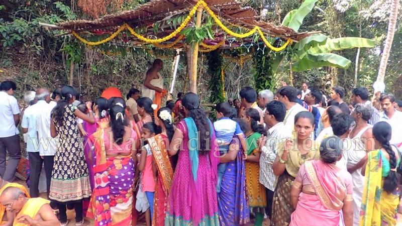Kundapura_Ashwaththa Tree_Mariage (19)