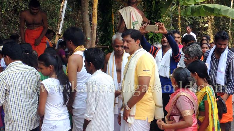 Kundapura_Ashwaththa Tree_Mariage (20)
