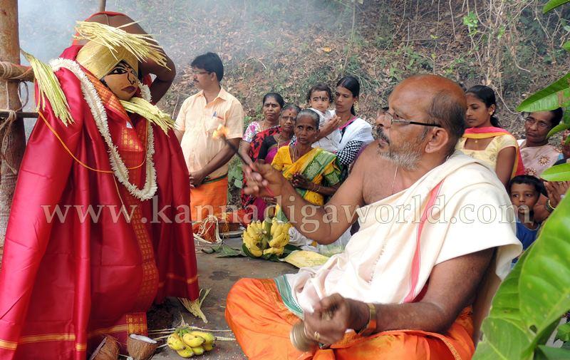 Kundapura_Ashwaththa Tree_Mariage (5)