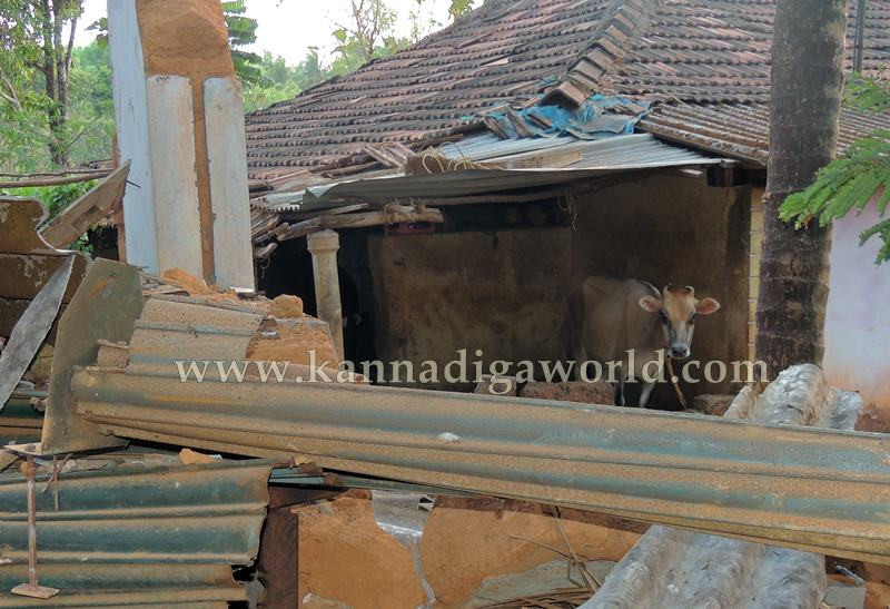 Kundapura_Tipper_Accident (1)