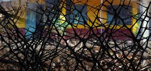 School-Thorn-Web
