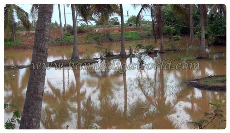 Kundapura_Rain_Problem (3)