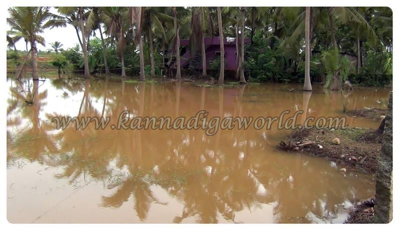 Kundapura_Rain_Problem (4)