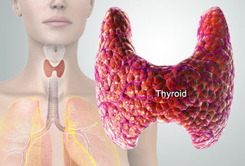 thyroid_symptoms