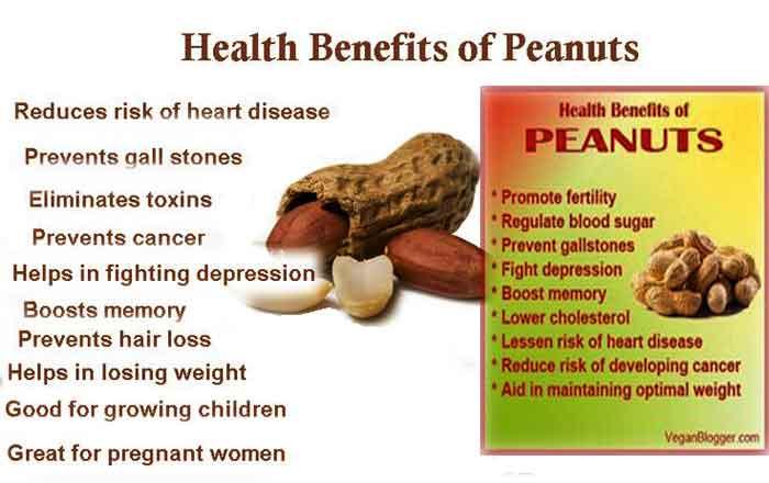 peanuts_benifit_4a