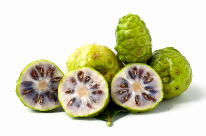 noni_fruits_1