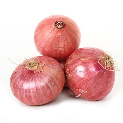 onion-500x500